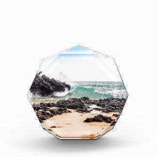 Maui Wave Award