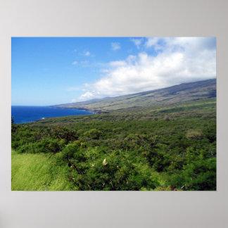 Maui Wowee Poster