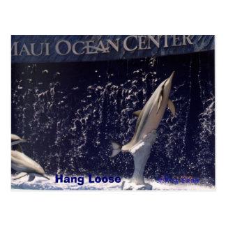 Mauii Ocean  Hang Loose Postcard
