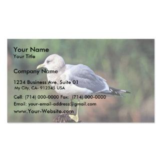 Maúlla la gaviota tarjetas de visita