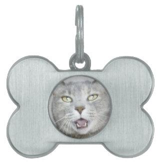maullido abierto hilarante mullido de la boca del placas de mascota