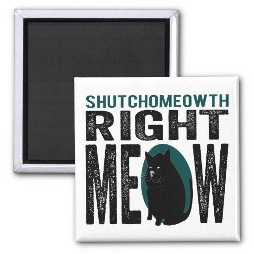 Maullido correcto de ShutchoMEOWth - gato divertid Imán Cuadrado