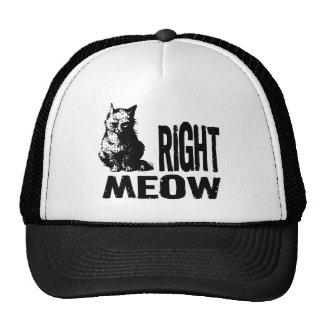 ¡MAULLIDO correcto! Gatito malvado divertido Gorro De Camionero