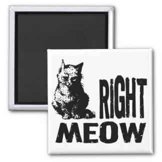 ¡MAULLIDO correcto! Gatito malvado divertido Imán Para Frigorífico