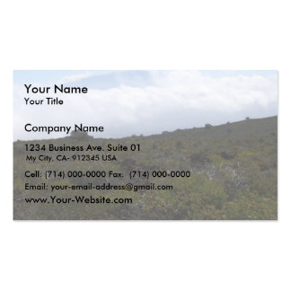 Mauna Loa From The Summit Of Hualalai Volcano, Kon Double-Sided Standard Business Cards (Pack Of 100)