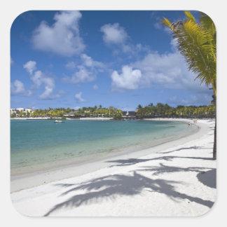 Mauricio, Mauricio del este, agua Douce del d de T Colcomanias Cuadradass