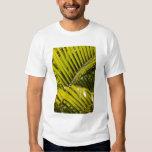 Mauritius, Central Mauritius, Moka, palm T-Shirt