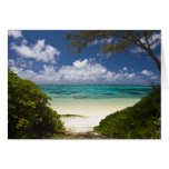 Mauritius, Eastern Mauritius, Belle Mare, East Cards