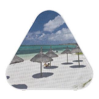 Mauritius, Eastern Mauritius, Belle Mare, Speaker