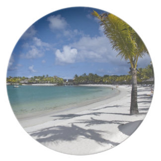 Mauritius, Eastern Mauritius, Trou d' Eau Douce, Dinner Plate