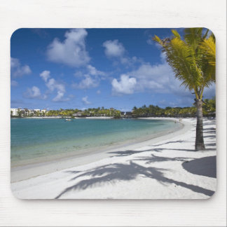 Mauritius, Eastern Mauritius, Trou d' Eau Douce, Mouse Pad