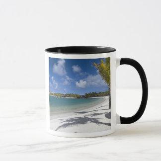 Mauritius, Eastern Mauritius, Trou d' Eau Douce, Mug