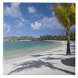 Mauritius, Eastern Mauritius, Trou d' Eau Douce, Tile