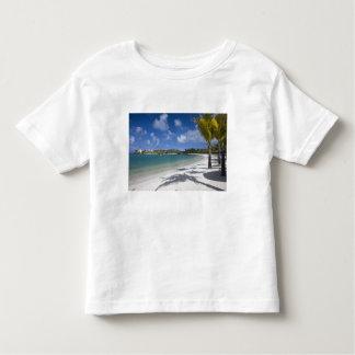Mauritius, Eastern Mauritius, Trou d' Eau Douce, Toddler T-shirt