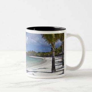 Mauritius, Eastern Mauritius, Trou d' Eau Douce, Two-Tone Coffee Mug