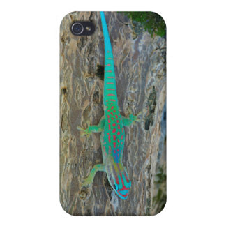 Mauritius Lowland Forest Day Gecko iPhone 4/4S Covers