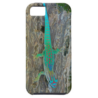 Mauritius Lowland Forest Day Gecko iPhone SE/5/5s Case