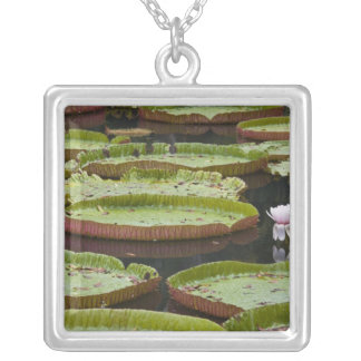 Mauritius, Pamplemousses, SSR Botanical Silver Plated Necklace