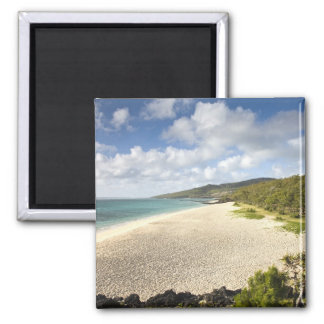 Mauritius, Rodrigues Island, St. Francois, St. 2 Inch Square Magnet