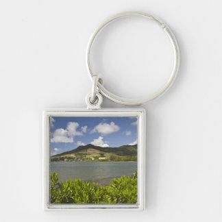 Mauritius, Southern Mauritius, Grand Sable, Keychain