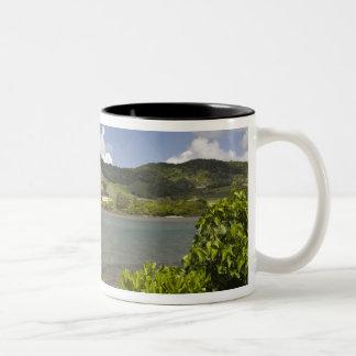 Mauritius, Southern Mauritius, Grand Sable, Two-Tone Coffee Mug