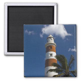 Mauritius, Western Mauritius, Belle Vue, Albion 2 Inch Square Magnet