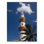 Mauritius, Western Mauritius, Belle Vue, Albion Post Card
