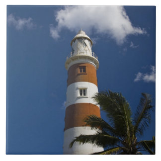 Mauritius, Western Mauritius, Belle Vue, Albion Large Square Tile