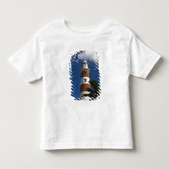 Mauritius, Western Mauritius, Belle Vue, Albion Toddler T-shirt