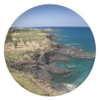 Mauritius, Western Mauritius, Belle Vue, Ocean Dinner Plate