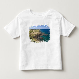 Mauritius, Western Mauritius, Belle Vue, Ocean Toddler T-shirt