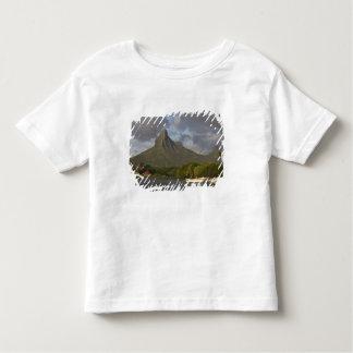 Mauritius, Western Mauritius, Tamarin, Montagne Shirt