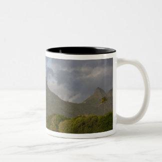 Mauritius, Western Mauritius, Tamarin, Montagne Two-Tone Coffee Mug