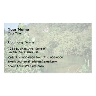 Maury River, Virginia Double-Sided Standard Business Cards (Pack Of 100)