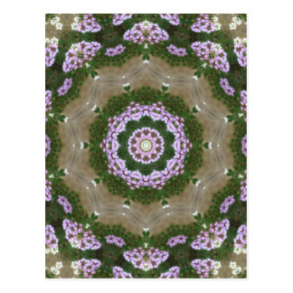 Mauve and White Lantana Kaleidoscope Art 1 Postcard