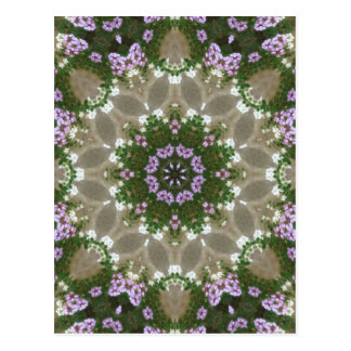 Mauve and White Lantana Kaleidoscope Art 3 Postcard