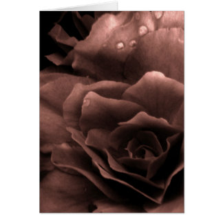 Mauve Close Up of a Double Begonia Card