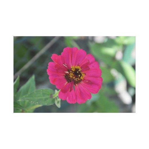 Mauve flower stretched canvas prints