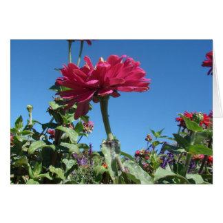 Mauve Flower in Bloom Card