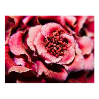 Mauve Flower Postcard