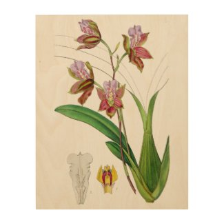 Mauve Orchids Botanical Wood Wall Art