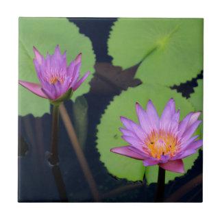 Mauve pink water lilies tile