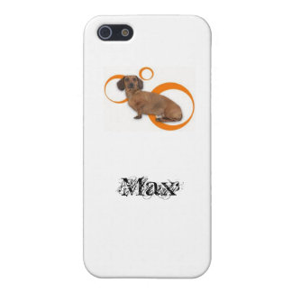 Max 4 iPhone SE/5/5s case