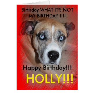 Max Cool Pet Dog Birthday Card