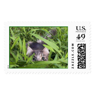 Max in the Grass Postage
