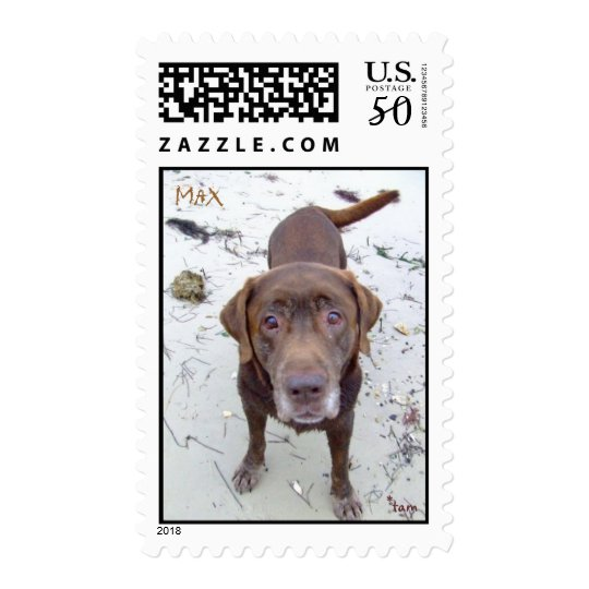 Max on the beach Postage