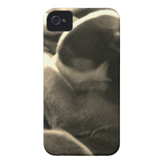 Max phone cover
