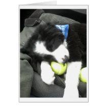 Max pup