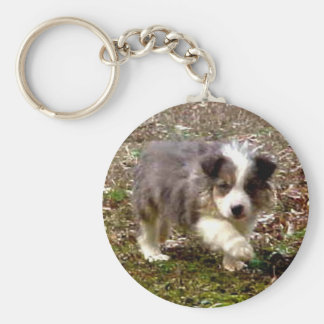 Max~The Border Collie Keychain