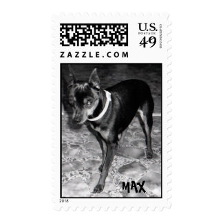 Max the Min Pin Postage Stamp